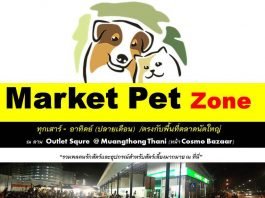 market pet zone
